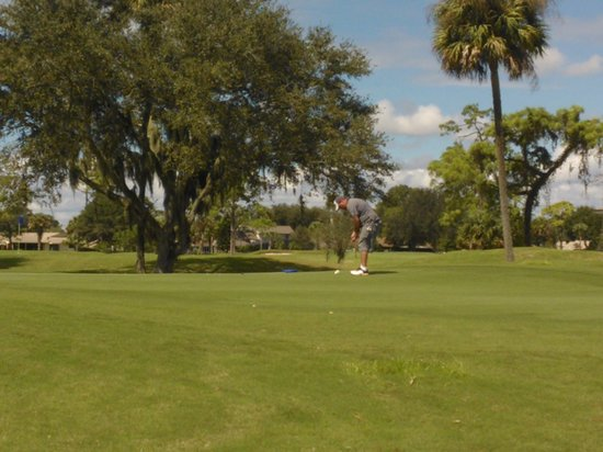 New Smyrna Beach Golf Course: On the Green.