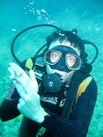 Tulum Underwater: buceo