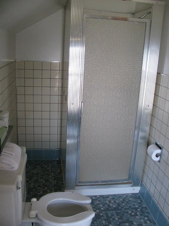 Alpine Resort & Golf : shower
