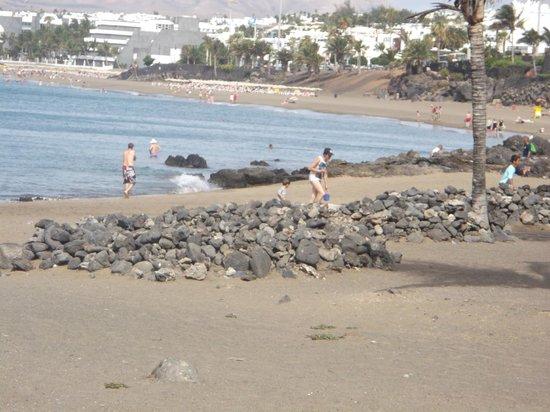 Riviera Park Apartments: puteo del carmen  beach