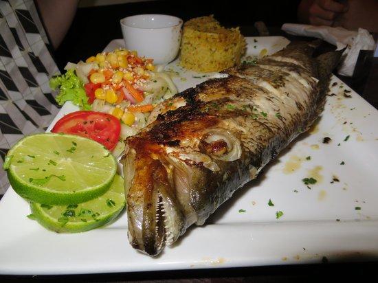 Restaurant La Villa del Chef : The Blanco fish again, from the front