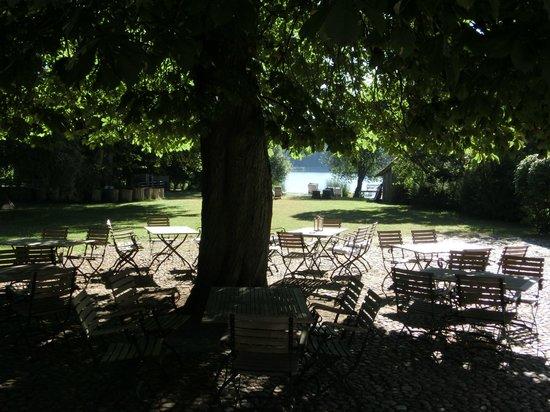Seehotel Neuklostersee: Biergarten mit Kastanie