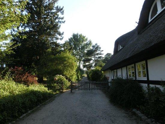 Seehotel Neuklostersee: Blick aus dem Gelände heraus