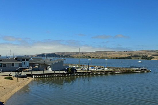 Tomales Bay Resort: View from Room 31