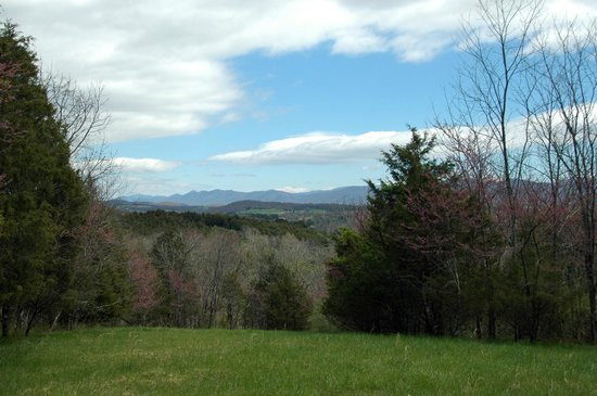 Autumn Ridge Cottages: View of the Blue Ridge Mountains