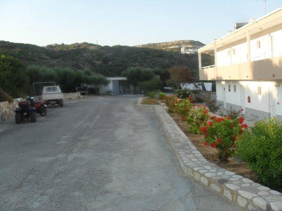 Vasilis Studios : Front of the Vasilis