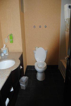 Hampton Inn & Suites Indianapolis/Brownsburg : Bathroom