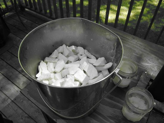 Door County Creamery: Bucket of Curds