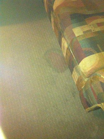 MCM Elegante Suites: Stained Carpet