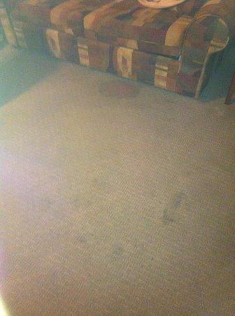 MCM Elegante Suites: Dirty Carpet
