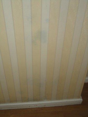Osuna Hotel: funguss growing under wall paper
