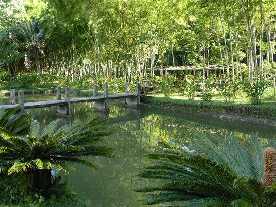 Lago de Pesca - Finca Hotel Los Arrayanes