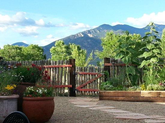 El Meze Restaurant: El Meze patio view