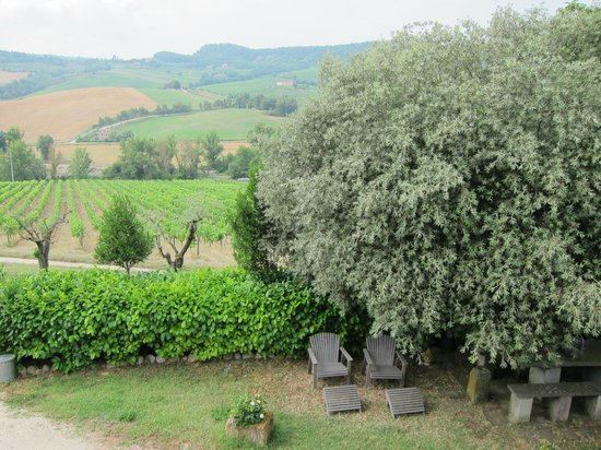 Agriturismo Cioccoleta : View from the terrace