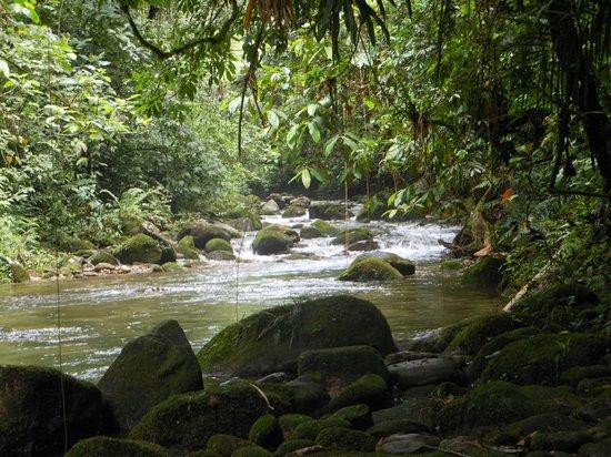 Rancho do Pica Pau Eco Resort: Rio