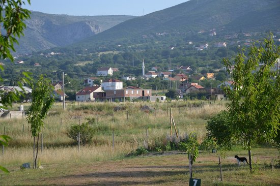 Mali Wimbledon: view from the camping towards Blagaj