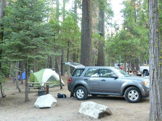 Hodgdon Meadow Campground: Campsite 92