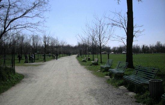 Parco Galleana: il viale principale