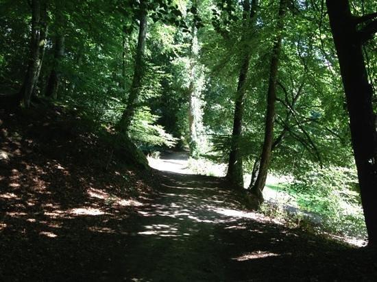 Bois d Amour (Lover's Wood): Bois d Amour, Josselin