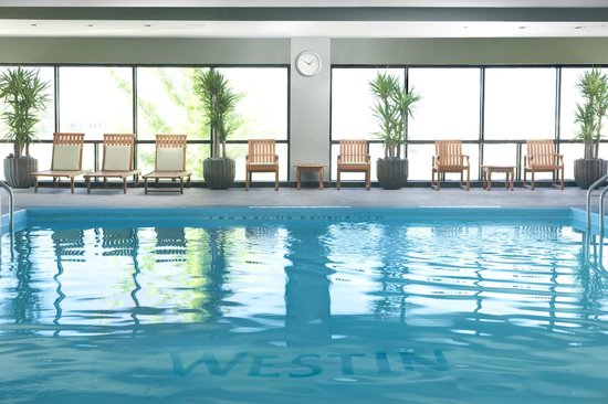 The Westin O'Hare: Westin Indoor Pool and Patio