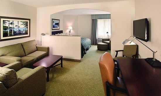 Ann Arbor Regent Hotel & Suites : Executive Suite
