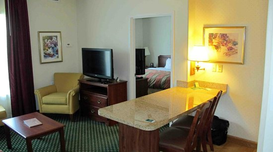 Homewood Suites by Hilton Rochester / Henrietta: TV