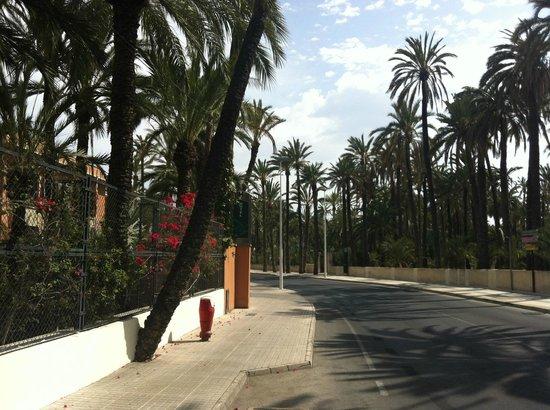 Jardin Milenio: Entrada