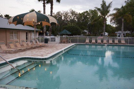 Tampa East RV Resort: Heated Swimming Pool