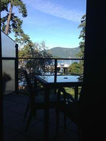 Brentwood Bay Resort & Spa: View from room.