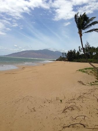 Dolphins Point Maui: Just a few steps from your door is Kamaole 1, a great Maui beach!