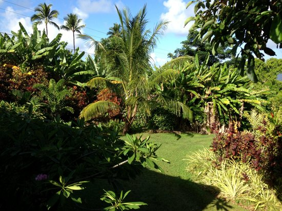 The Guest Houses at Malanai in Hana: Grounds