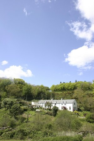 Lower Radaford: A charming B&B and holiday cottage set in its own valley just a stone's throw from Dartmoor and