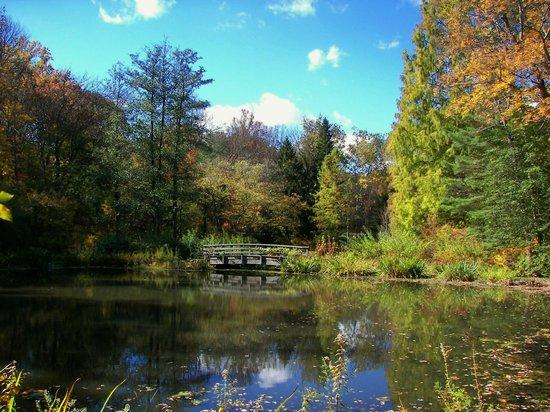 Pond Picture Of Leonard J Buck Garden Far Hills