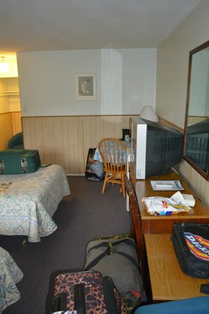 Lake City Motel: View from door way