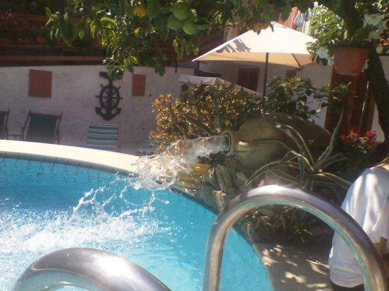 Oasi la Vigna B&B Restaurant: la piscina 03