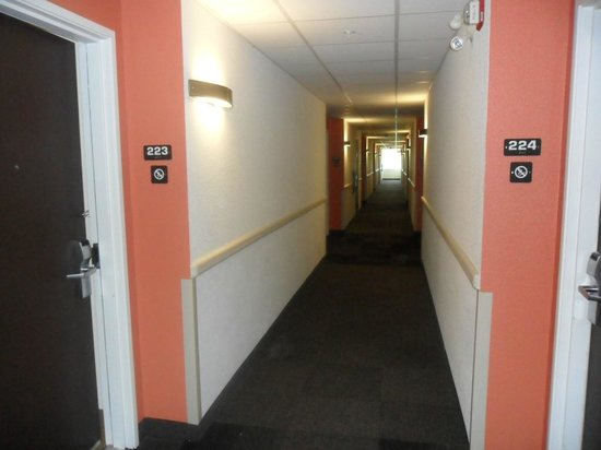 hallway picture of motel 6 toronto mississauga. Black Bedroom Furniture Sets. Home Design Ideas