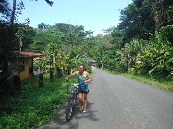 Hotel Pura Vida: La route vers Punta Uva
