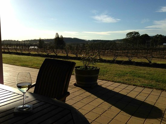 Bluebush Estate: A lazy wine at sunset