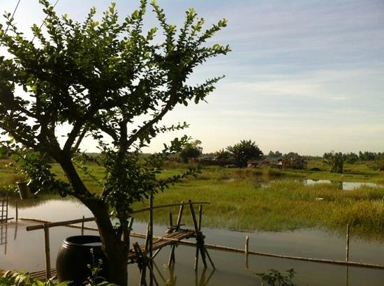 Riverside Impression Homestay: vista dal patio