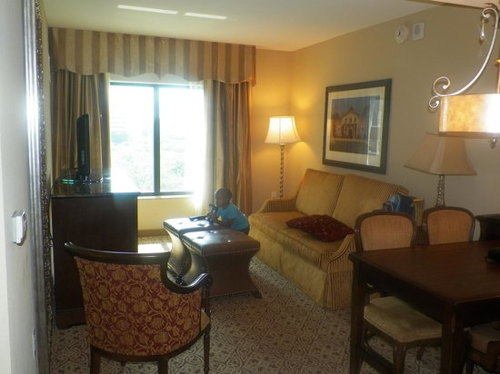 Embassy Suites by Hilton San Antonio Riverwalk-Downtown: The living area