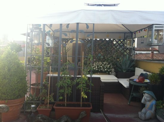 Domus Valeria : One of the rooftop terrace view