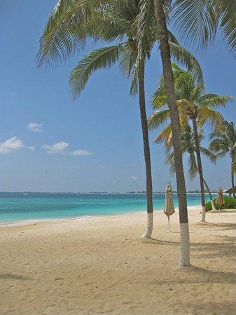 The Cayman Club: the beach!