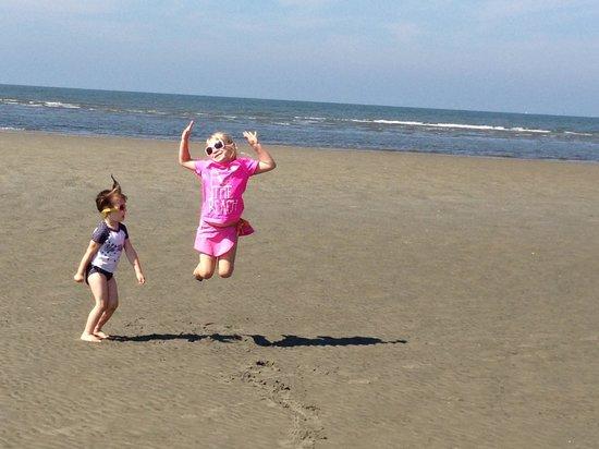 Harvey's Beach: Beach Day!