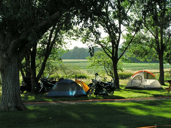 Shell Campground: Nice tent sites