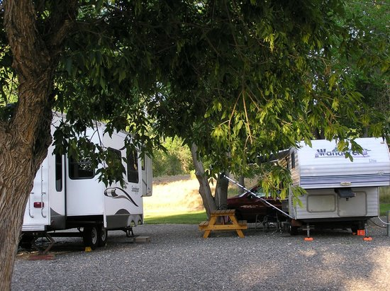Shell Campground: Shade trees