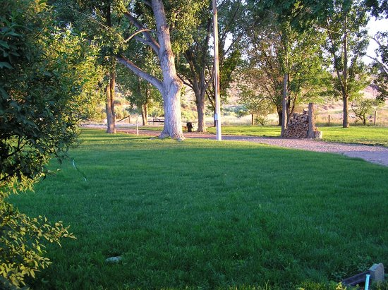 Shell Campground: New grass on grounds