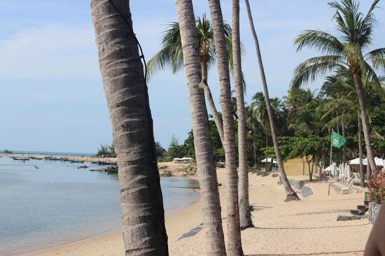 Nora Beach Resort and Spa: beach at front of resort