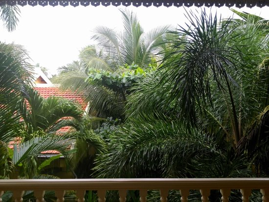 La Veranda Resort Phu Quoc - MGallery Collection: tree view, dont u think so?