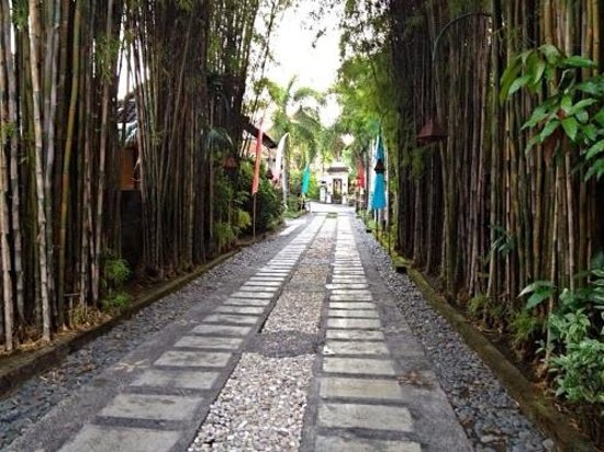 Tamukami Hotel: laneway to the hotel. tucked away so it was always quiet