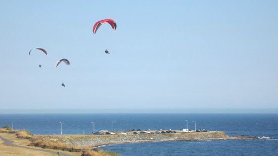 Dashwood Manor Seaside Bed and Breakfast Inn: kite gliding